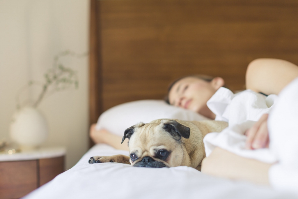 Conseils pour dormir vite